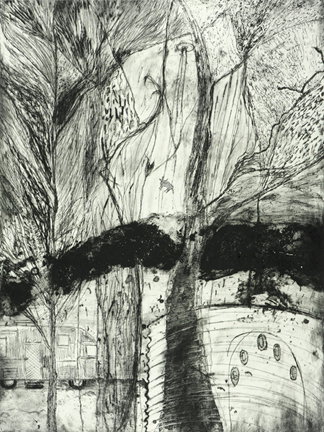 Bronwyn Rees Dark Heart in the Wild Woods, 2013, etching.
