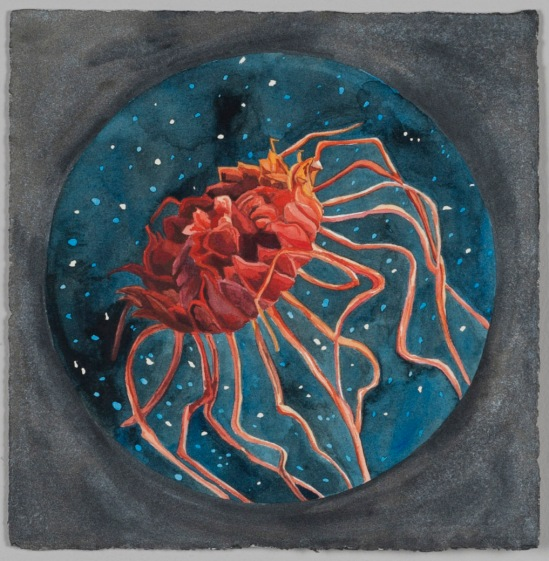 Nicole Macdonald Endless Midnight, 2012, watercolour, 32 x 31 cm