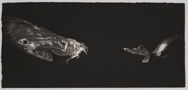 Nicole Macdonald Lurking #1, 2010, intaglio print, edition of 10, 36 x 66 cm