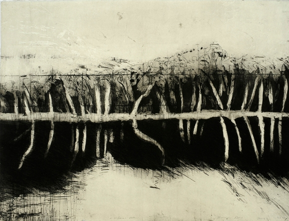 Bronwyn Rees, Motherland, 2003, etching on used steel 56 x 72 cm