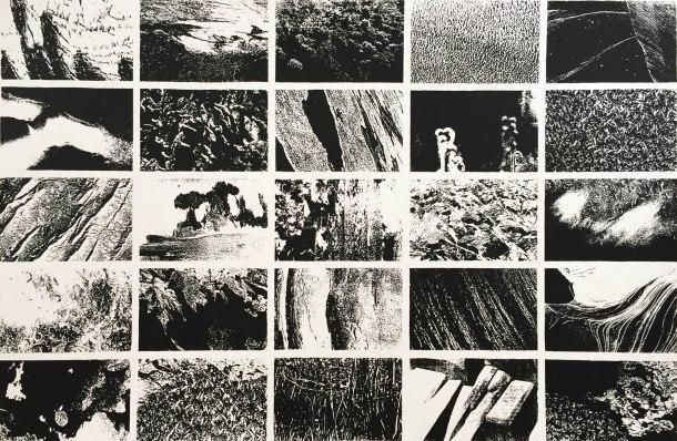 Carmel Wallace, Elemental 1991, screenprint, 42 x 64 cm